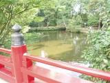 大宮 氷川神社 フリー画像