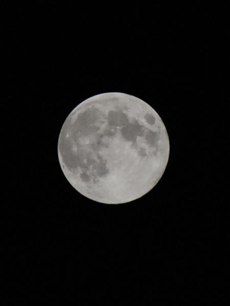月 フリー画像