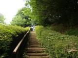 自然 道 階段 フリー画像