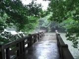 吉祥寺 井の頭公園